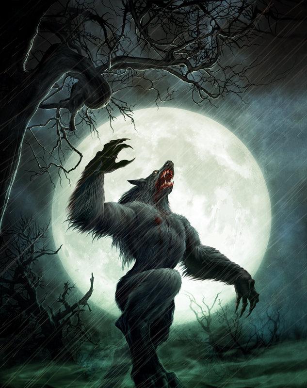 Haruto Knight (For Haruto's charicter) Werewolf